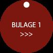 Webontwerp BUTTON OB bijlage1