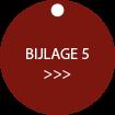 Webontwerp BUTTON OB bijlage5